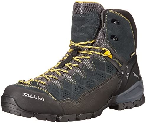 Salewa Mens ALP Trainer Boots product image