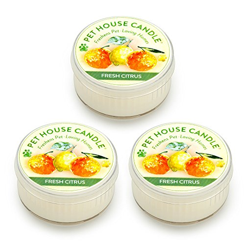 One Fur All Pet House Mini Candle Set, Pack of 3 - Fresh Citrus - Pet Odor Eliminator Candle, Burn Time - 10-12 Hours Pet Candle, Non-Toxic, Allergen-Free & Ideal for Smaller Spaces