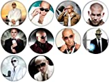 pitbull the singer - Pitbull Pinback Buttons Badges/Pin 1 Inch (25mm) Set of 10 New