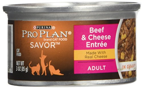 (Purina Pro Plan Canned Adult Beef Cheese Food in Gravy, 3 oz.)