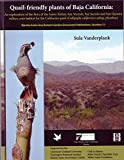 img - for Quail-friendly Plants of Baja California : An Exploration of the Flora of the Santo Tom s, San Vincente, San Jacinto, and San Quint n Valleys, Core Habitat for the California Quail (Callipepla Californica Subsp. Plumbea) book / textbook / text book