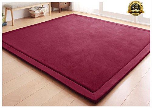 HIGOGOGO Japanese Coral Velvet Carpet Thickness:2cm, Wine Children Play Mat Plush Foam Bedroom Mat Area Rug Yoga Mat, 31 by 78 inch Reversible Living Room Carpet/Children Crawling Mat
