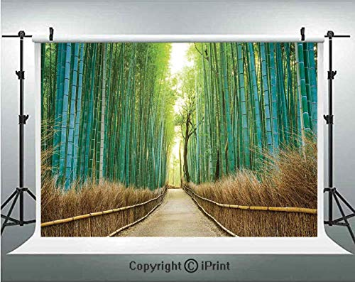 Bamboo Forest in Japan Photography Backdrops Panoramic View of Historic Landscape Park Decorative,Birthday Party Background Customized Microfiber Photo Studio Props,10x6.5ft,