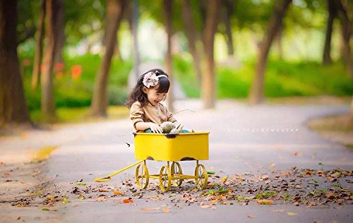 Hot! 2016 New Creative Newborn Photography Props infant Photo Props Baby Photography Props Retro Iron Art Trolley for Newborn Baby D-76 by backdropday (Image #2)