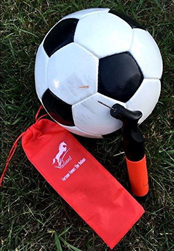 Sports Ball Pump with 5 Needles (Pins) and Pouch | Dual Action Portable Air Ball Pump (Two-Way Hand Pump) with Replacement Needles (Pins) to Inflate Soccer Ball, Football, Volley Ball & Basketball