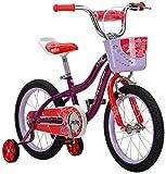Schwinn Elm Girls Bike for Toddlers and Kids, 16-Inch Wheels, Purple