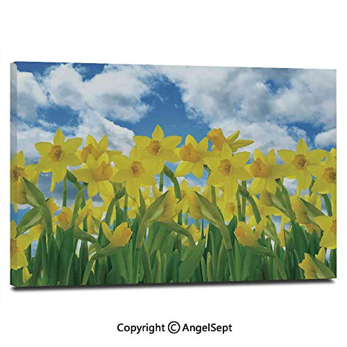 Canvas Prints Modern Art Framed Wall Mural A Field of Daffodil Flowers Blooms Against Summer Sky Cloudscape Picture Print Wall Decorations for Living Room Bedroom Dining Room Bathroom ()