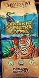 magnum coffee - Magnum Exotics Coffee: Organic Sumatra Coffee 32oz (2lb)