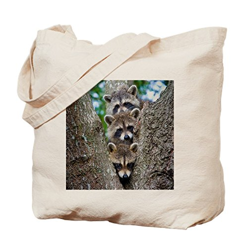 CafePress - Baby Raccoon Trio - Natural Canvas Tote Bag, Cloth Shopping Bag (Raccoon Trio)