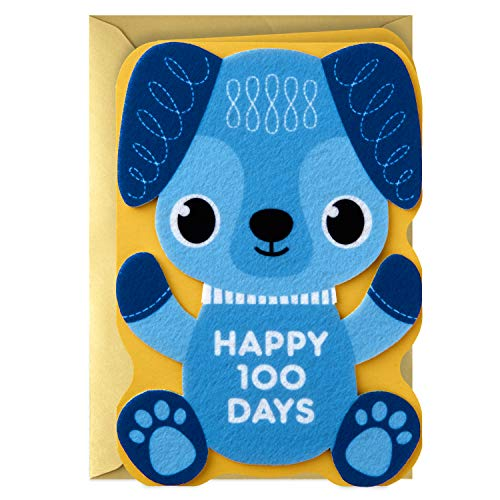 Hallmark Eight Bamboo Baby's First 100 Days Card (Welcome to the World)