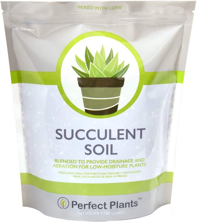 All Natural Succulent and Cactus Soil Mix by Perfect Plants | 4 Quarts for All Succulent Varieties | Formulated for Proper Drainage