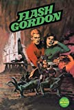 img - for Flash Gordon Comic Book Archives Volume 4 book / textbook / text book