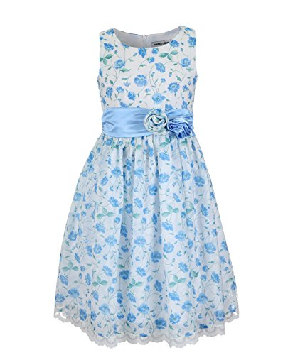 Emma Kids Dress (EMMA RILEY Girls' Flower Dress With Satin Sash and Rosettes 10 Blue)