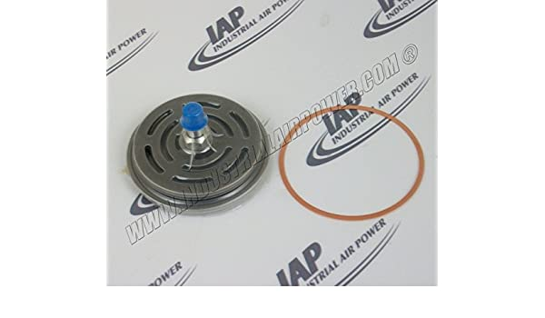 15-1524 Discharge Valve - Leroi Replacement Part: Amazon.com: Industrial & Scientific