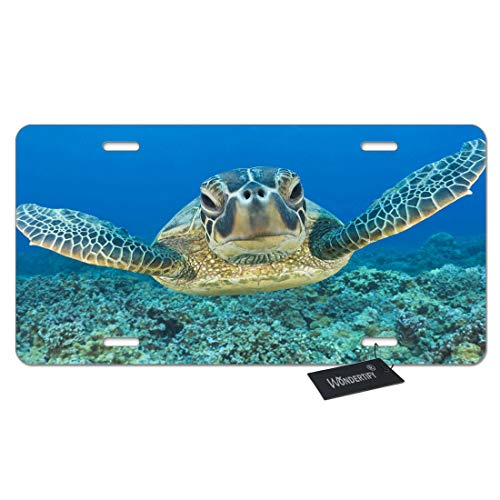 (WONDERTIFY License Plate Lonely Sea Turtle Decorative Car Front License Plate,Vanity Tag,Metal Car Plate,Aluminum Novelty License Plate for Men/Women/Boy/Girls Car,6 X 12 Inch (4 Holes))