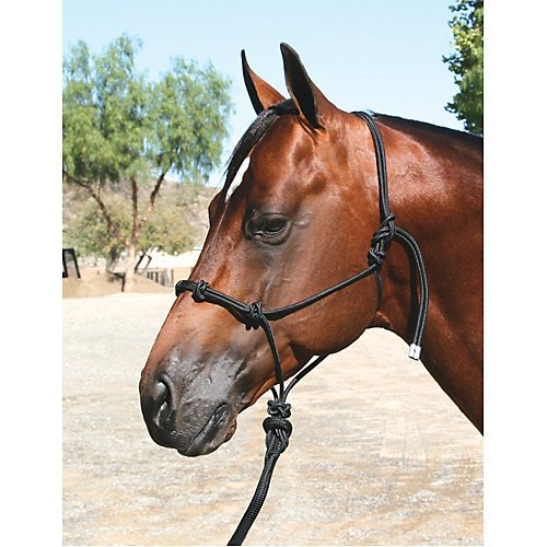 Professionals Choice Equine Nylon Clinician Halter (15-Feet, Lead Black)