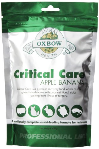 Oxbow Critical Care Apple/Banana Pet Supplement, (Small Pet Care)