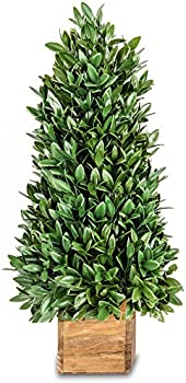 Jusdreen 20' Spring Artificial Flower Potted Plants Bonsai Tree Ornaments