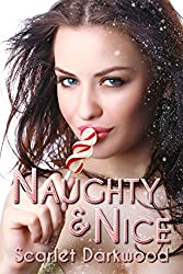 Naughty & Nice (Break For A Quickie Book 3)