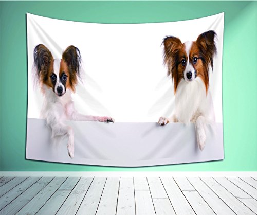 Avamam Tapestry Wall Art Wo Dog Of Breed Papillon Isolated On A White Background- Wall Hanging For Bedroom Living Room Dorm Size-86