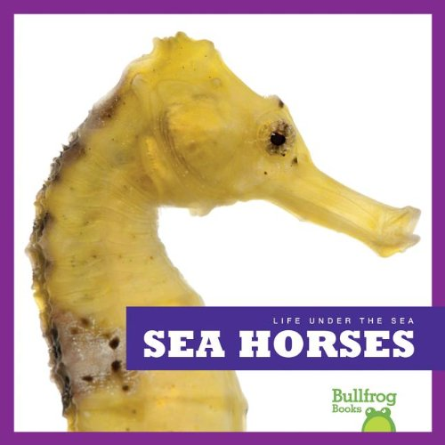 Sea Horses (Bullfrog Books: Life Under the Sea)