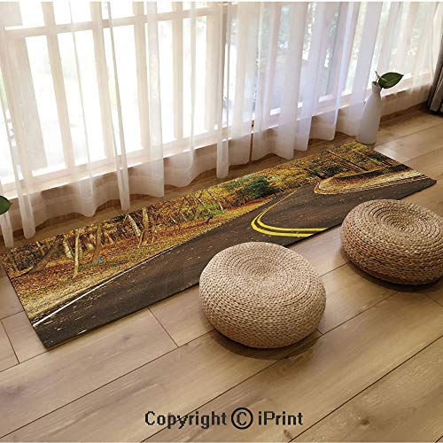 Indoor and Outdoor Long Floor mat,Autumn Scene with Curvy Road in Forest at Letchworth State Park New York USA Decorative Multicolor,18