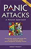 img - for Panic Attacks: A Natural Approach, Second Edition book / textbook / text book