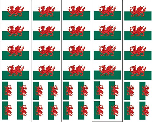 40 Tattoos: Welsh Flag, Wales Party (Halloween Temporary Tattoos Uk)