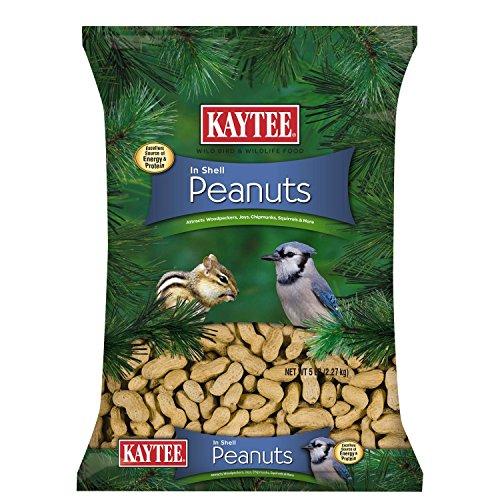 Kaytee Peanuts Shell Birds 5 Pound product image