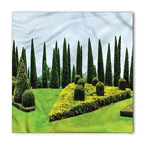 Garden Bandana by Lunarable, Classic Formal Designed Garden Evergreen Shrubs Boxwood Topiaries Picture, Printed Unisex Bandana Head and Neck Tie Scarf Headband, 22 X 22 Inches, Green and Baby Blue (Topiary Standard)