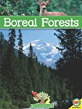 Boreal Forests, Patricia Miller-Schroeder, 1616906421