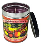 Our Own Candle Company Black Raspberry Vanilla Scented Candle in 13 Ounce Tin with a Colorful Fruit Label