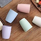 Choary Eco-friendly Unbreakable Reusable Drinking