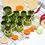TIMGOU 12 Pcs Vegetable Fruit Cutter Shapes Set with Melon Baller Scoop and Cleaning Brush, Fruit and Mini Cookie Stamps Mold for Kids Crafts Baking Decorating Food-Green 11 12 Different Shape: There are 12 pcs different shape cutters in the package, contains shape of fish, rabbit, flower, duckling, star, strawberry, mushroom and so on. Come with melon baller and cleaning brush: The stainless steel fruit scoop helps to make ball shape fruit to decorate your made dish, small brush to clean the mold in hard reaching corner. Simple and extensive use: Just press the twist gently, you can get a pattern you want. Widely used for sugar cake, DIY biscuits, chocolate, mini pie, cookies, make fruit and vegetables into multiple shapes for Salad or fruit tray, suit for kids having fun in DIY.