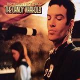 Dandy Warhols - Bohemian like you