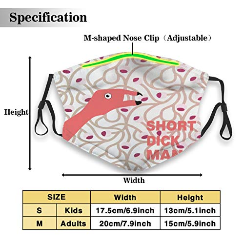 Flamingos Short Dick Man Face Masks With Replaceable Filter Mouth Mask Muffle Mask Breathable And Comfortable Mouth Cover Mask For Women Men And Kids