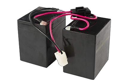 Amazon.com: Razor Crazy Cart Batería con fusible (V5+) – OEM ...