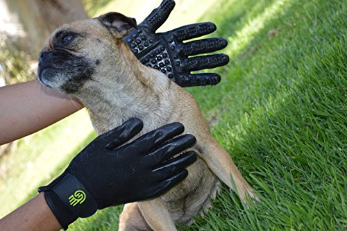 #1 Ranked, Award Winning HandsOn Gloves for Shedding, Bathing, Grooming, De-Shedding Horses/Dogs/Cats/Livestock/Small Pets