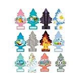 Best Car Air Fresheners - Little Trees Home and Car Air Fresheners 12 Review