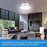 Drosbey 36W Dimmable LED Flush Mount Ceiling