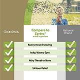 GoodSense All Day Allergy, Cetirizine HCl Tablets