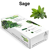 (US) Garden Starter Kit (Sage) Grow a Garden by Seed. Germinate Seeds on Your Windowsill then Move to a Patio Planter or Herb Patch. Mini Greenhouse System Makes it Foolproof, Easy and Fun.