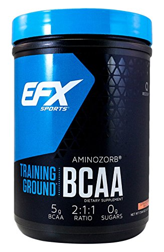 EFX Sports Training Ground BCAA Powder, Strawberry Peach, 500 Gram For Sale