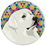 Great Pyrenees 6