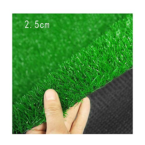 ALGWXQ Artificial Turf Encryption No Fading Football Field Roof The Mall Fake Grass, 8 Kinds Of Colors, Customizable…