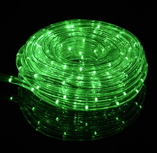 Fantado Green Outdoor LED Fairy String Rope Light, 33 FT, Clear Tube, AC Plug-In by PaperLanternStore - Foot Clear Rope Lights