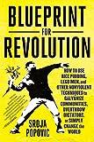 "Srdja Popovic, ""Blueprint for Revolution"" (Spiegel and Grau, 2015)"