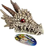 Product review for Penn-Plax RR1206 Dragon Skull Gazer Ornament