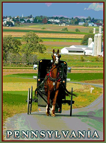 MAGNET Amish Country Horse Pennsylvania United States Travel Advertisement Magnet