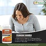 Best Naturals Lactose Intolerance Relief Tablets